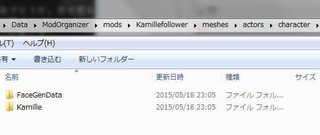SkyrimSE-Kamil.jpg