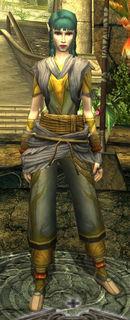 lv14_Outfit_chakuyouzu.jpg